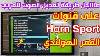 Photo of Hornsat Sport TV New Biss Key on NSS 12 at 57.0°East 2021