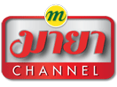 Photo of Maya Channel SD New TP Frequency on Thaicom 6 at 78.5°East
